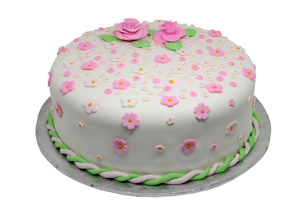 Sample Cake 10