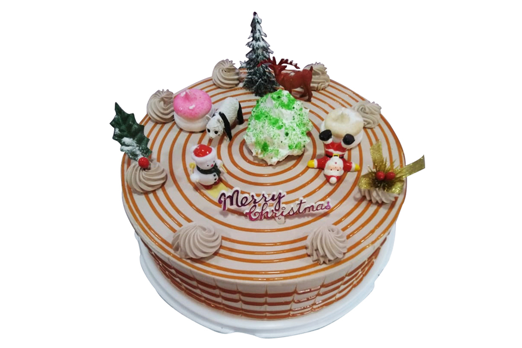 X'mas Chocolate Cake